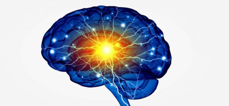 ALCAR – wspiera nie tylko mózg